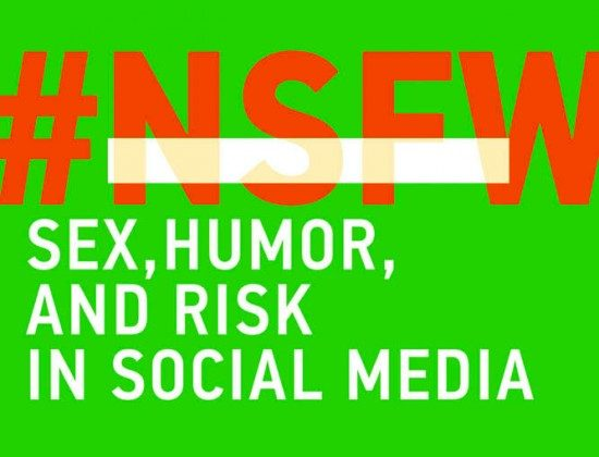 Cover of the book NSFW Sex, Humor and Risk in Social Media