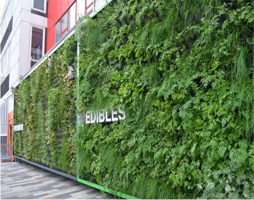 Green wall at University of Salford