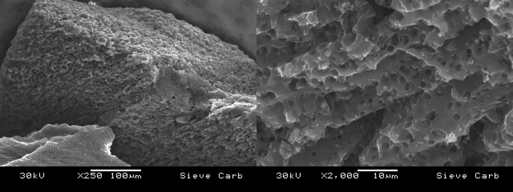 SEM image of Activated carbon